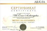 Повышение квалификации ARAVIA