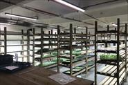 Создание системы освещения для стеллажей с рассадой