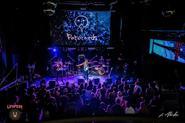 Техническое обеспечение международного фестиваля независимых групп «Emergenza 2017» на сценах «Milo Concert Hall», «Premio Centre» и «Ленинград бар»;