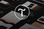 Сайт на конструкторе Tilda по продвижению в инстаграмме